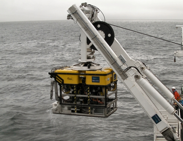 ROV Holland I being deployed from the Irish research vessel Celtic Explorer.  The ROV remains attached to the ship by the fibre-optic cable or 'tether' at all times.  Note the thrusters for manoeuvrability, the robotic arms for collecting, and the white 'bioboxes' at the front for storing samples.